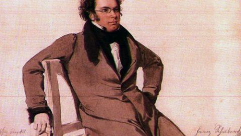 Ipse dixit: Franz Schubert