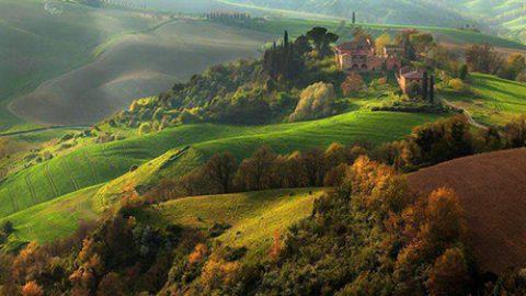 Ipse dixit: Francesco Petrarca