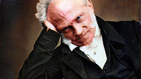 Ipse dixit: Arthur Schopenhauer