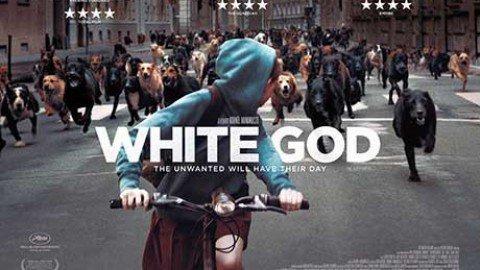 White God – Kornèl Mondruczò