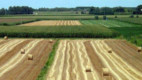 Il piano di sviluppo rurale (PSR)