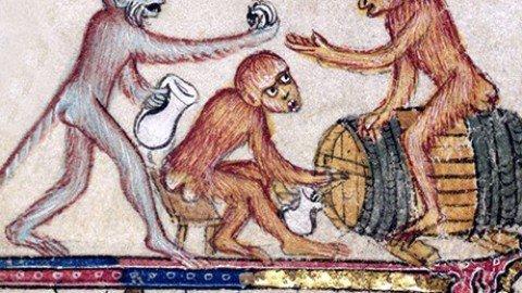 L'ipotesi della scimmia ubriaca