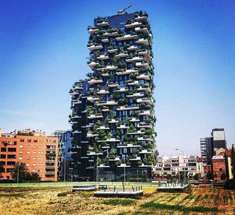 Il Bosco verticale a Milano è il grattacielo più bello del pianeta