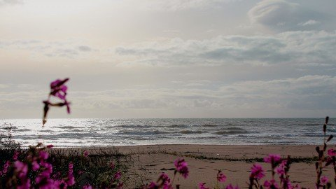 Il mare è senza strade