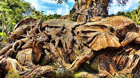 Il nuovo albero della vita: un mondo sempre più.. piccolo!