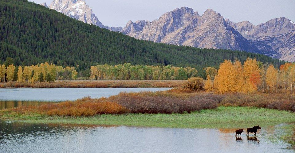 Nel primo parco nazionale del mondo il problema sono gli effetti immediati del riscaldamento, come la riduzione dei flussi delle acque di superficie e l'aumento della durata della stagione degli incendi.