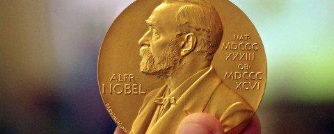 Nobel week: chi si è aggiudicato i premi scientifici 2016?