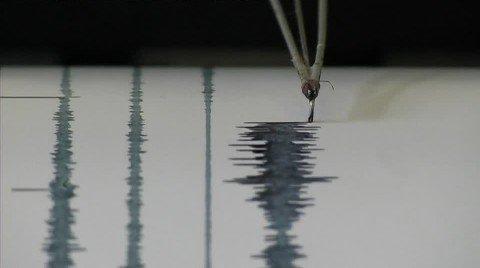 Bufale sismiche: la verità, vi prego, sulla magnitudo