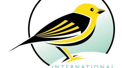 Darwin Day 2017: l'evoluzione, i fringuelli e gli eventi in Italia