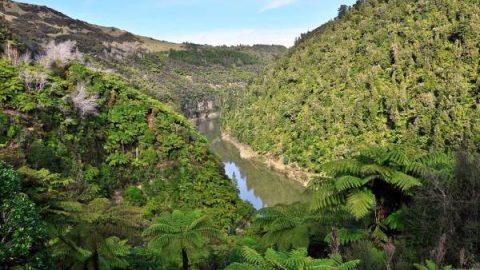 Nuova Zelanda: il riconoscimento della personalità giuridica al fiume Whanganui e la rivalutazione della cosmovisione Māori