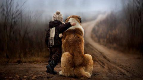 Domesticazione: uomini e cani, doppiamente amici?