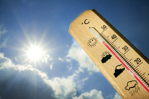 Estate e ondate di caldo: il futuro è sempre più torrido