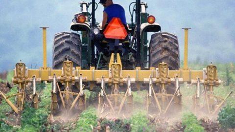 """Pesticidi negli alimenti? Test su una """"famiglia tipo"""" dà i numeri dell'emergenza"""