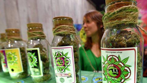 """Il Consiglio superiore della Sanità: """"stop"""" alla libera vendita della cannabis light"""