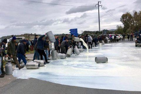 In Sardegna c'è l'accordo per il latte: agli allevatori 74 centesimi al litro