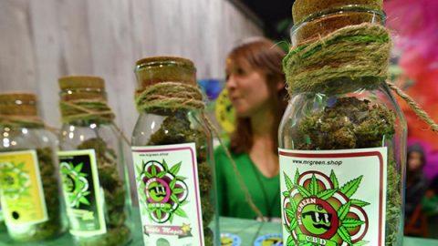 """Contro le droghe, la nuova battaglia di Salvini: """"Chiuderò i cannabis shop uno a uno""""."""