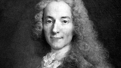Ipse dixit: Voltaire