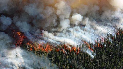 """Clima, Cnr Isac: """"Con il 2019 si chiude il decennio più caldo di sempre"""""""