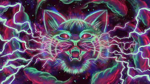 cat temper