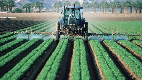 pesticidi tossici