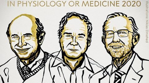 nobel prize medicine 2020