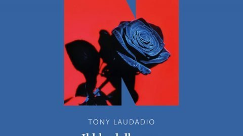 il blu delle rose libro